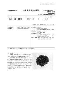 黒にんにく製造特許